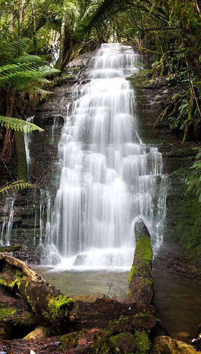 5a164aeb3cc1cecc2d5644fb9f4946c5--launceston-the-waterfall400